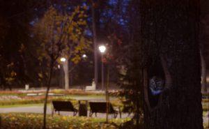 vrnjacka-banja-01-stanovnici-vrnjackog-parka-foto-to-vrnjacka-banja